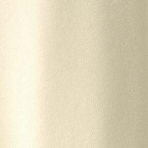 [ 50%OFF ] 【数量限定】【Vitale Barberis Canonico】2アウトプリーツフランネルスラックス