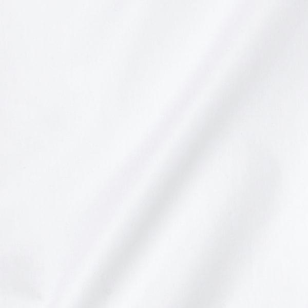 コットンブロードドレスシャツ/レギュラーカラー (8100-1900-R)